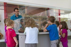 Groupe de petits enfants regardant une maquette.